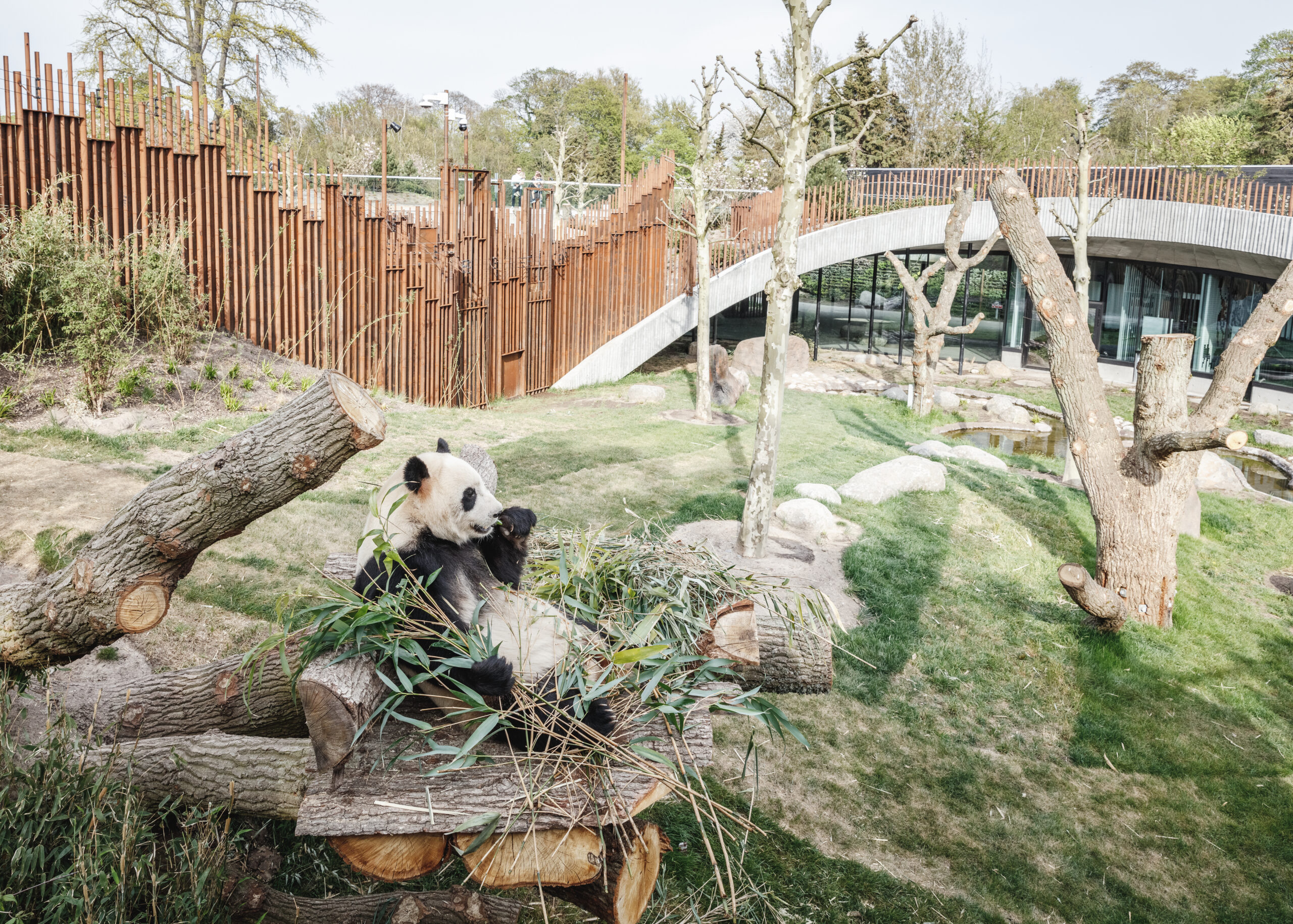 Panda House in Copenhagen Zoo