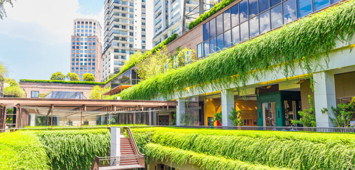 The Race to Carbon Zero: Decarbonising Real Estate – White Paper