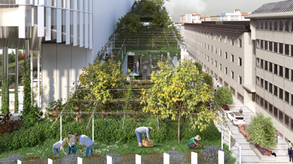 CRA Vitae Milan Vineyard - sustainable development